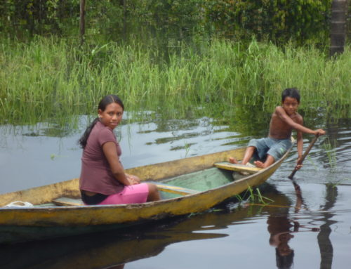 The Amazon Floating Court
